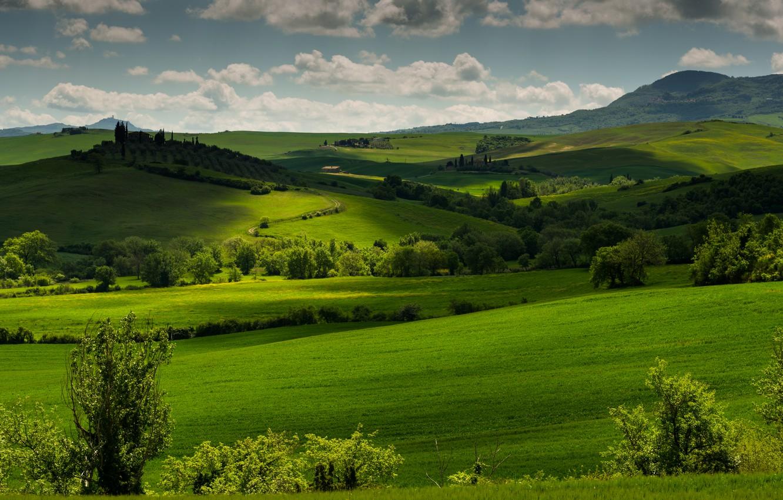Фото обои зелень, трава, облака, деревья, холмы, поля, Италия, луга, Тоскана, Tuscany