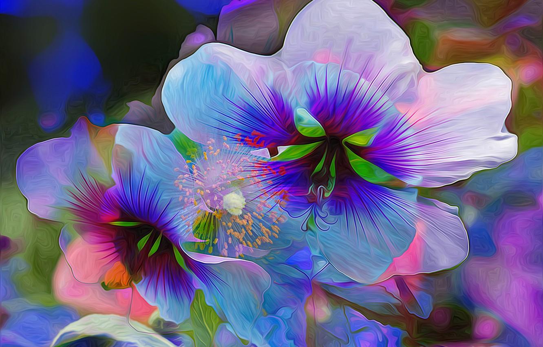 хотите картинки фантазийных цветов подход уравновешивает
