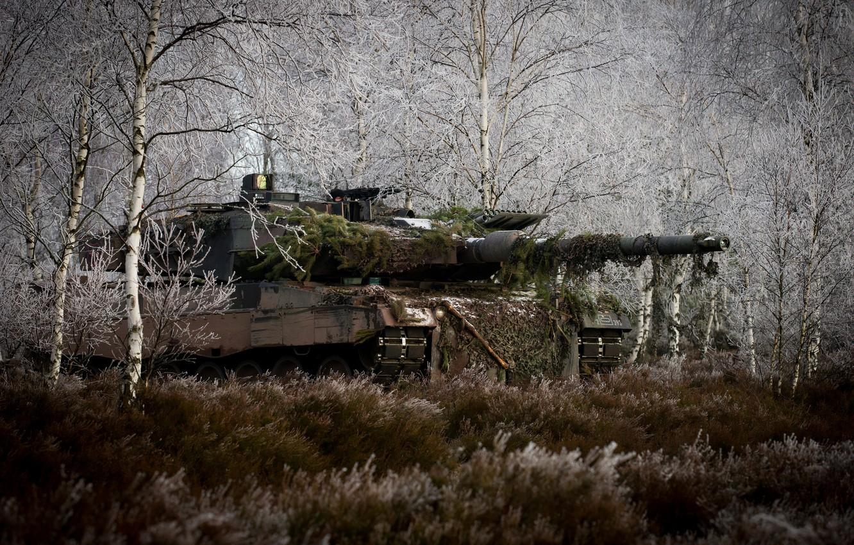 Фото обои лес, трава, деревья, танк, маскировка, боевой, Leopard 2A6M