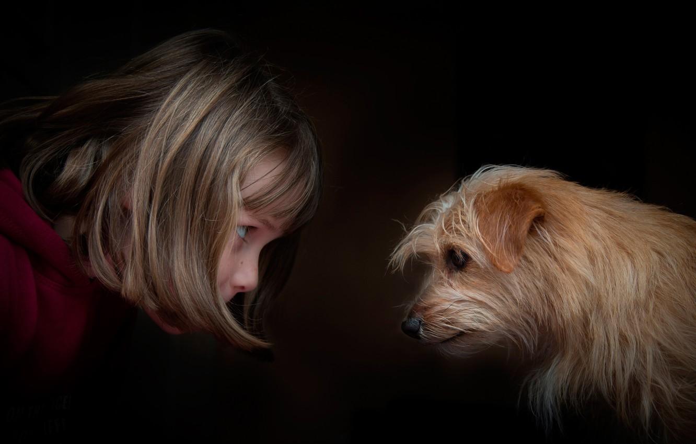 Фото обои девочка, собачка, глаза в глаза