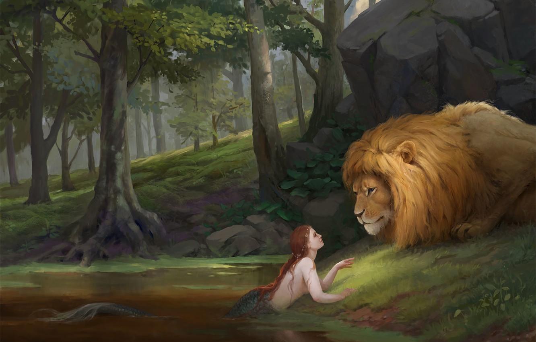 Обои мясо, лев. Разное foto 12