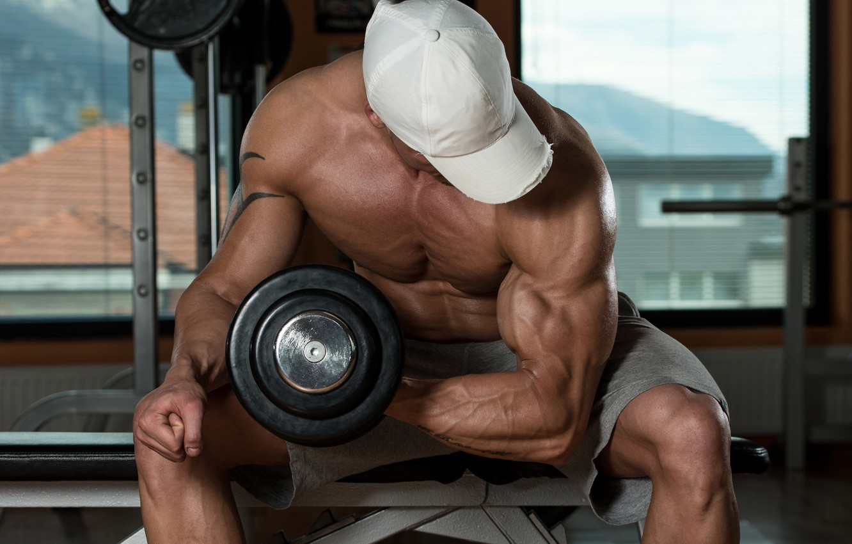 теней колода, бодибилдинг фото мужчины упражнения если