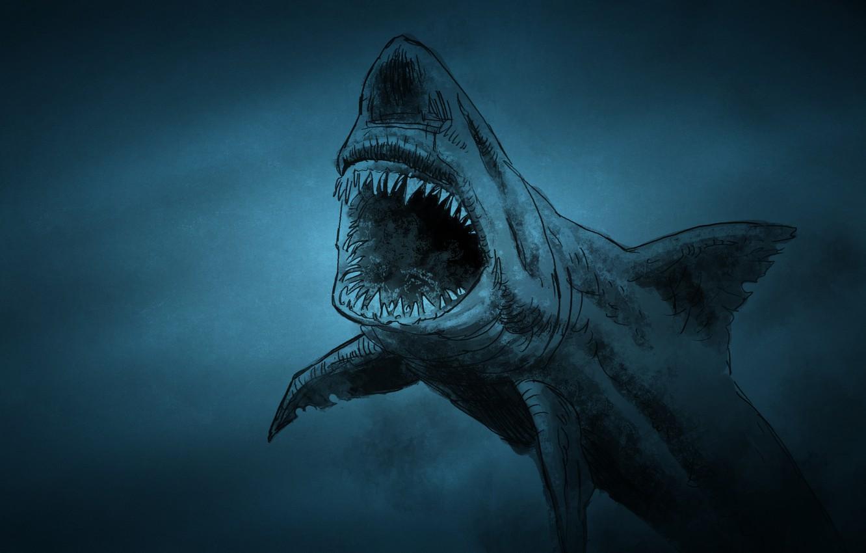 Фото обои рыба, акула, shark, fish, зубастая, темноватый фон