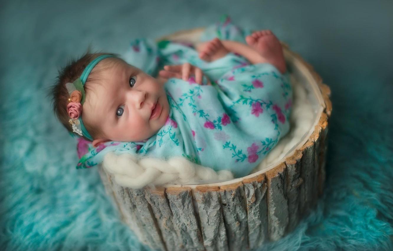 Фото обои взгляд, девочка, ткань, мех, кора, ребёнок, младенец