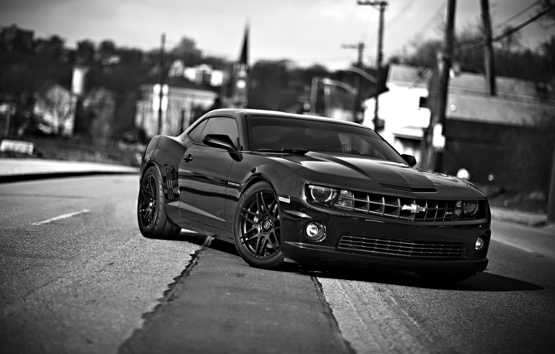 Фото обои авто, черно-белое, шевроле камаро, chevrolet camaro ss