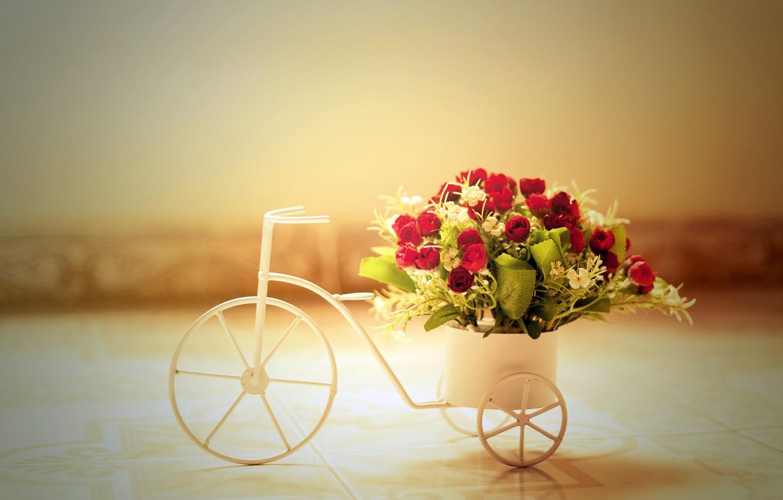 Фото обои цветы, велосипед, розы
