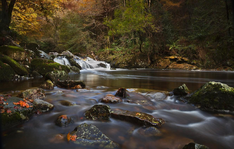Обои River erme, девон, осень, england. Пейзажи foto 6
