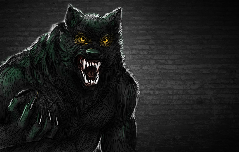 Обои рычит, Оборотень, werewolf, wolf. Разное foto 8
