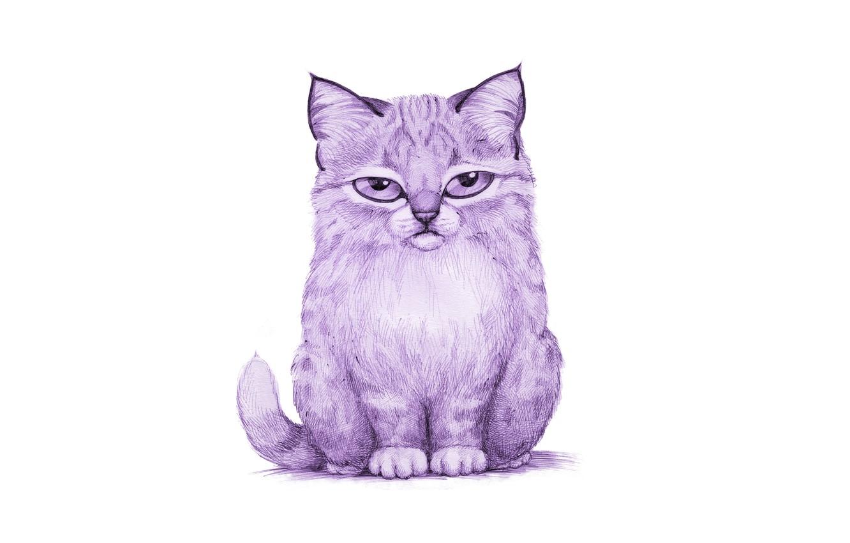 Сиреневый кот картинки