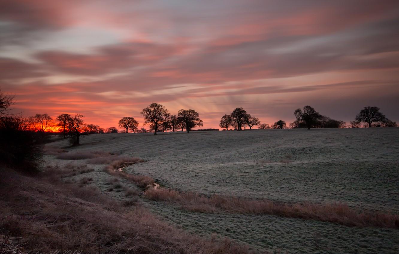 Фото обои поле, небо, пейзаж, ночь