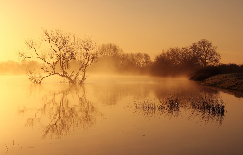 Фото обои пейзаж, природа, туман, озеро, утро
