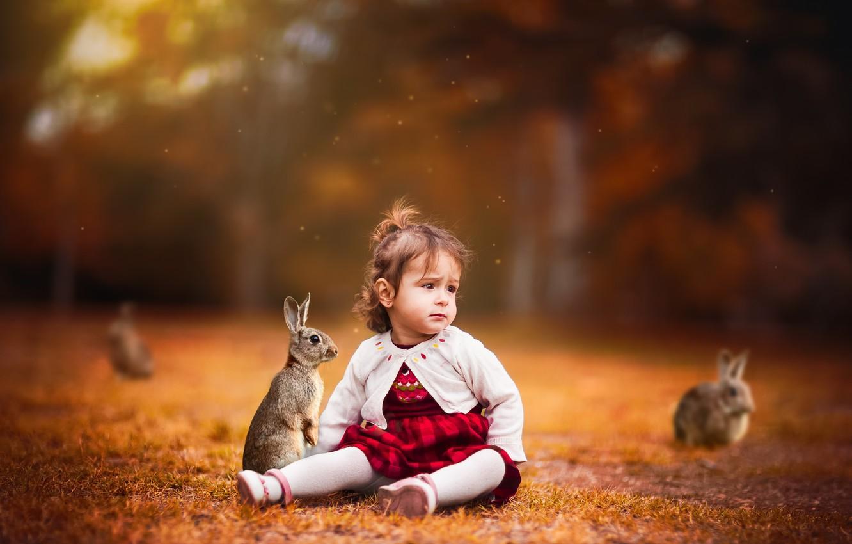 Фото обои фон, девочка, кролики