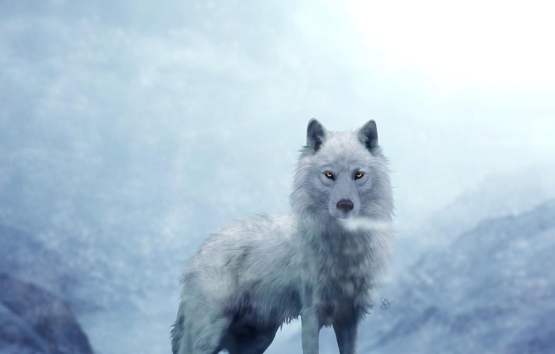 Фото обои белый, волк, на фоне, гор