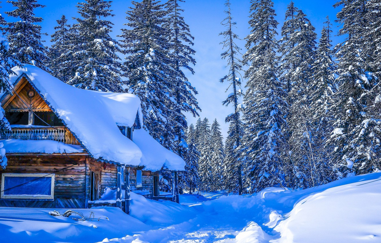 гигантская территории картинка зима природа с домиком как скачать программу