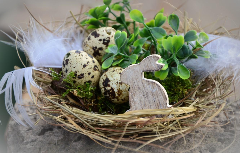 Фото обои листья, ветки, праздник, мох, яйца, перья, кролик, Пасха, гнездо, фигурка, декор