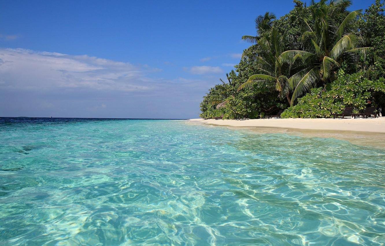 интересующему картинки песок вода пальмы поздравляю