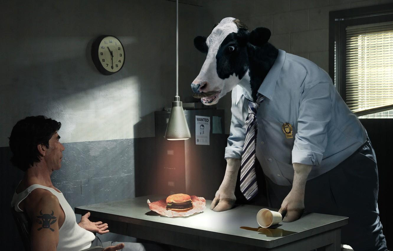 Фото обои корова, следователь, допрос