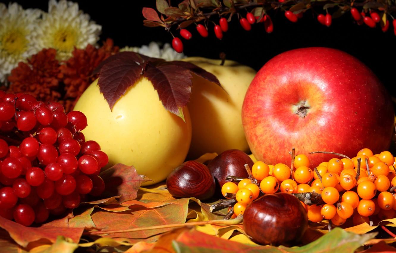 Фото обои осень, листья, цветы, яблоки, натюрморт, каштан, калина, облепиха