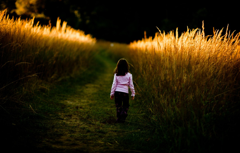 Фото обои дорога, поле, трава, дети, путь, настроение, заросли, настроения, девочки, девочка, прогулка, малышка, ребёнок, детишки, малышки, …