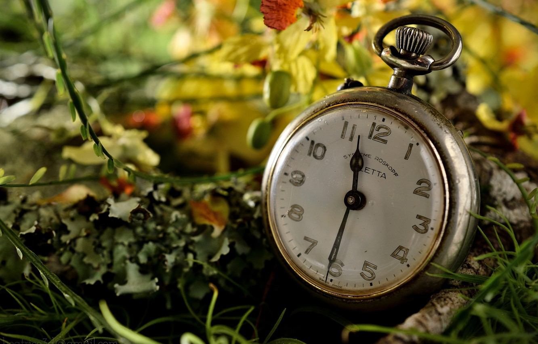 Фото обои макро, часы, циферблат