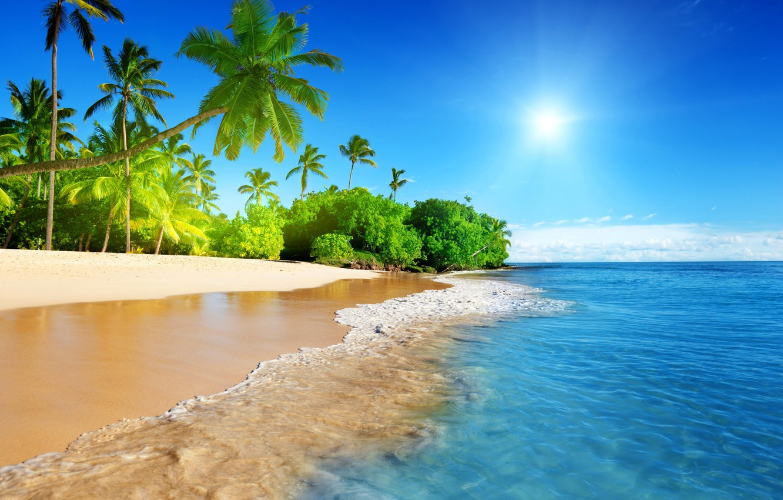 Фото обои пляж, тропики, пальмы, океан, берег, экзотика