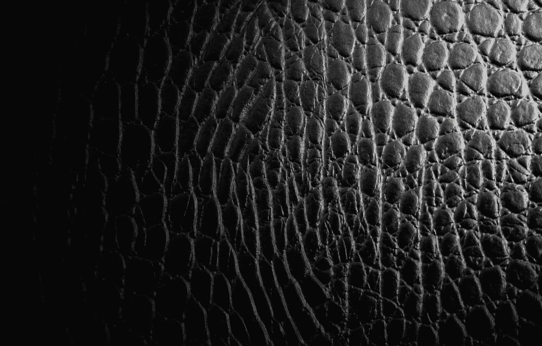 Фото обои фон, черный, кожа, крокодил, фактура, рептилия