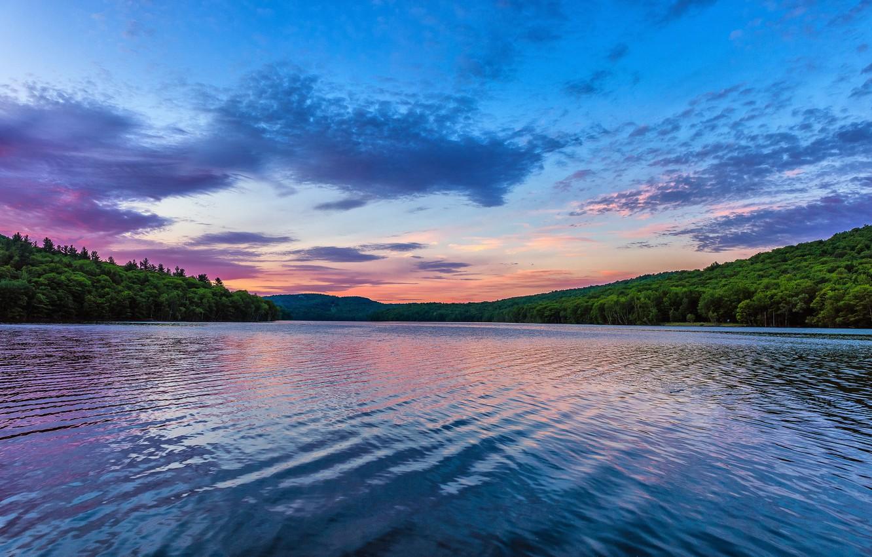 Фото обои лес, озеро, рассвет, утро