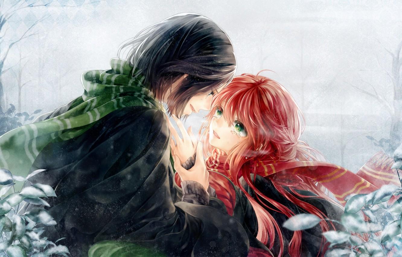 Фото обои девушка, аниме, слезы, арт, парень, двое, harry potter, severus snape, lily evans, meiriel