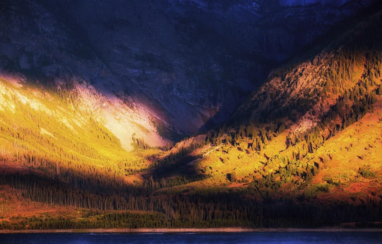Фото обои осень, лес, вода, свет, горы, природа