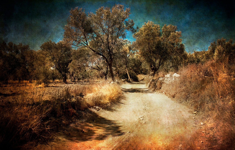 Фото обои дорога, пейзаж, стиль
