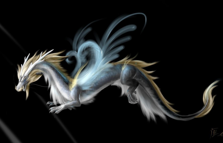 Фото обои взгляд, морда, фантастика, дракон, крылья, арт, хвост, рога, черный фон
