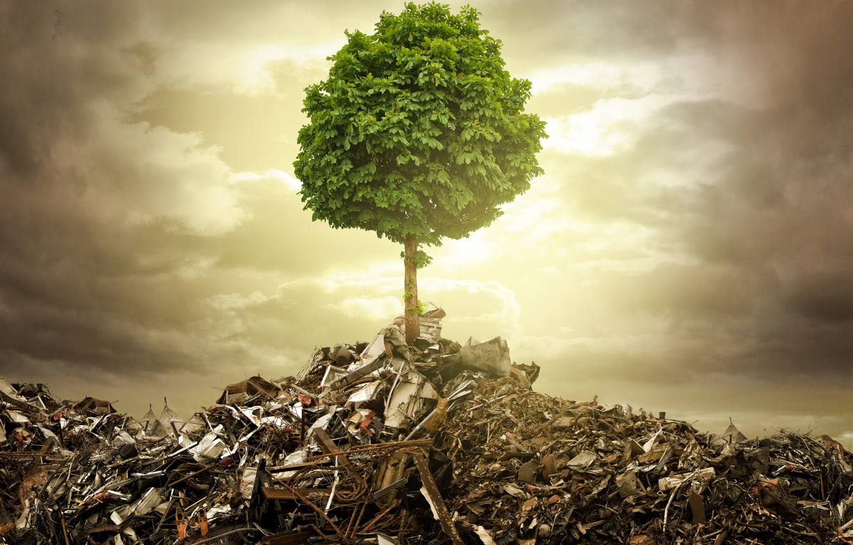 Фото обои обломки, металл, креатив, мусор, дерево