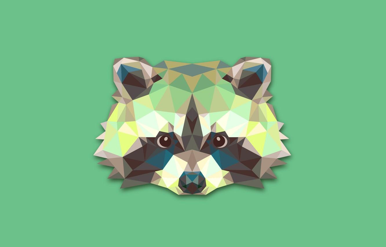 Фото обои абстракция, минимализм, енот, raccoon