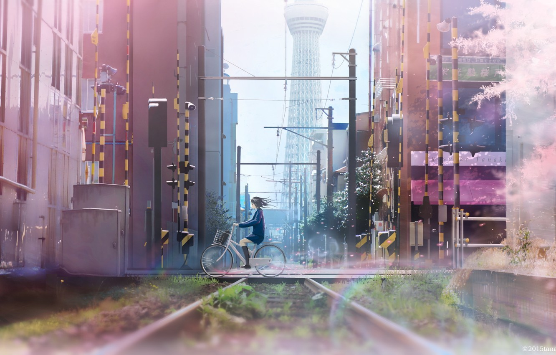 Фото обои девушка, велосипед, город, провода, дома, аниме, сакура, арт, школьница, tanaka ryosuke