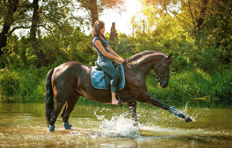 Фото обои трава, вода, девушка, солнце, деревья, брызги, природа, конь, лошадь, джинсы, майка, всадница, брюнетка, грация, речка, …
