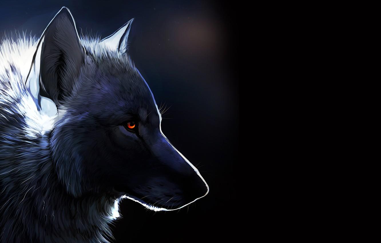 Фото обои Волк, черный фон, янтарные глаза