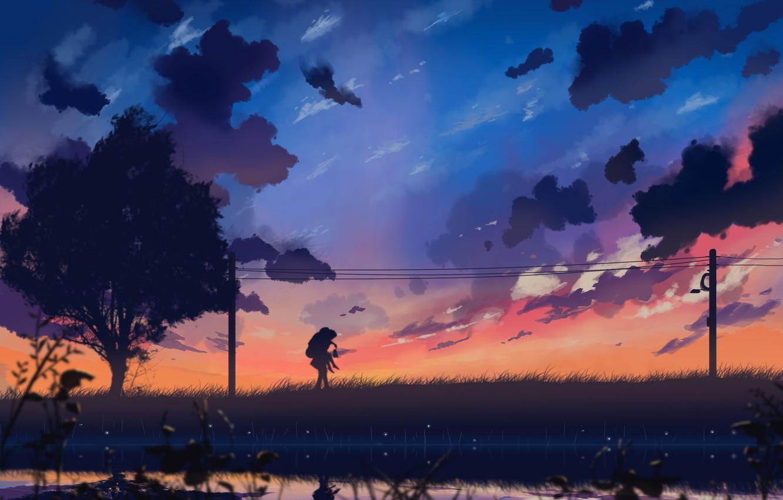 Фото обои небо, девушка, облака, закат, природа, провода, аниме, арт, парень, двое, dias mardianto, donsaid