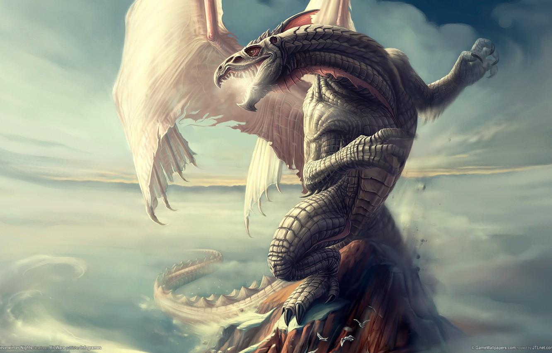 Фото обои дракон, чешуя, neverwinter nights