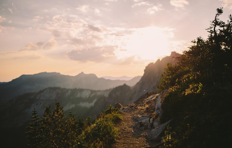 Фото обои Солнце, Небо, Облака, Горы, Трава, Деревья, Лес, Горизонт, Камни