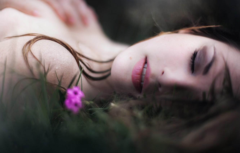 Фото обои цветок, губки, боке, Hell Model