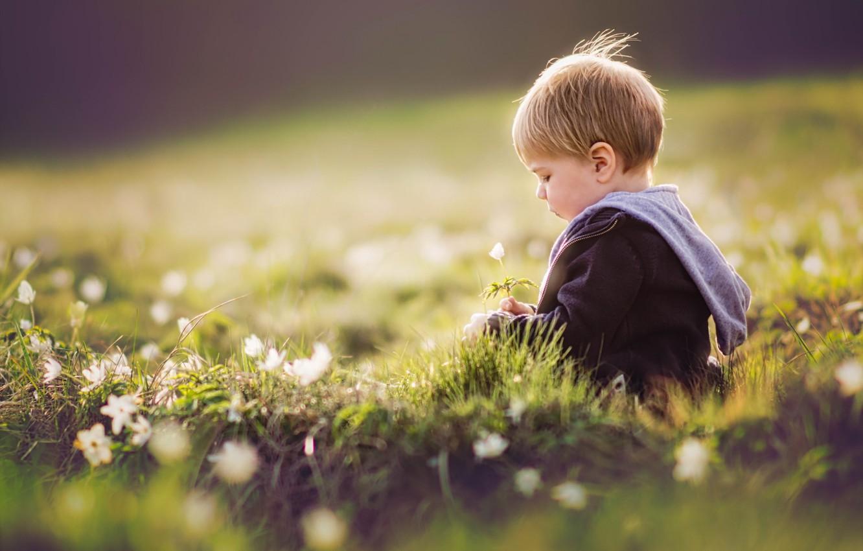 Фото обои лето, цветы, мальчик