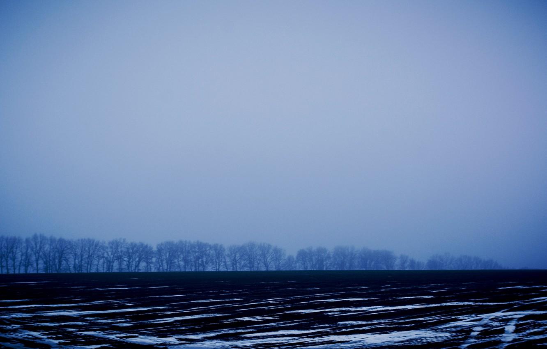 Фото обои зима, поле, снег, деревья, полоски, Украина