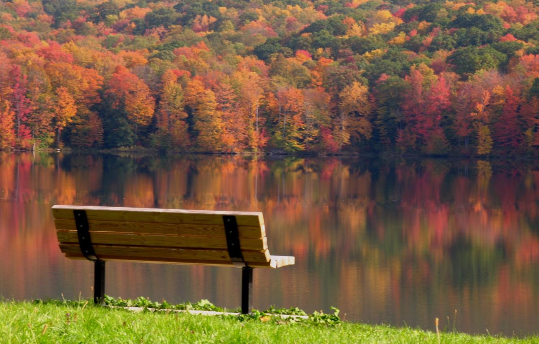 Фото обои листья, деревья, пейзаж, скамейка, отражение, река, безмятежность, Осень, день, лавочка, разноцветные, скамья