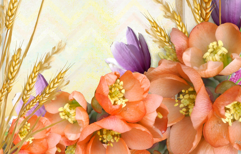 Обои цветы, Коллаж, рисунок, вектор. Разное foto 7