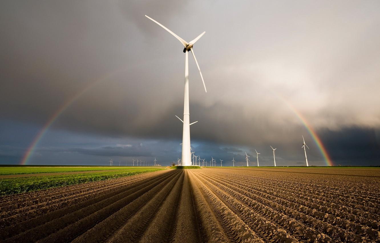 Фото обои поле, радуга, ветряки