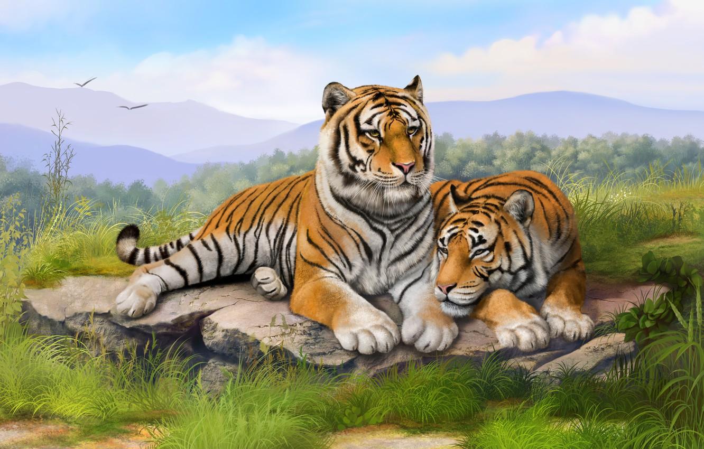 Фото обои трава, камни, живопись, тигры, art, лежат, olggah