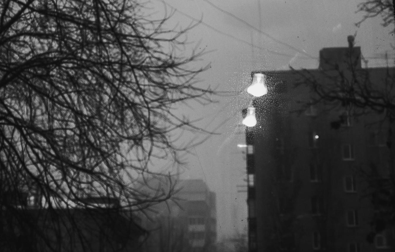 Обои небоскребы, туман, чб, раздел Песочница, размер 2560x1600 ... | 850x1332