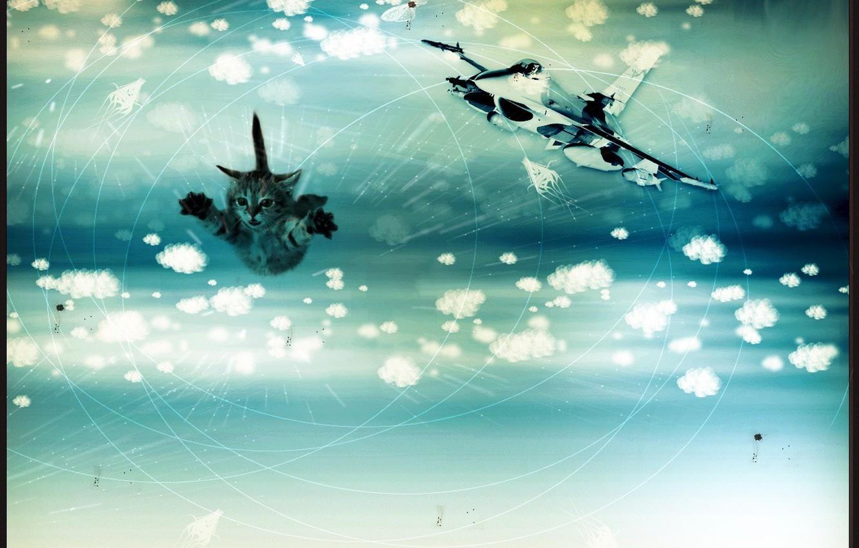 Фото обои облака, линии, полет, бабочки, мечты, кошки, круги, радость, непонятные штуки, счастье, авиация