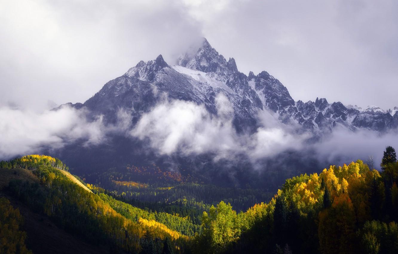 Фото обои осень, лес, горы, гора