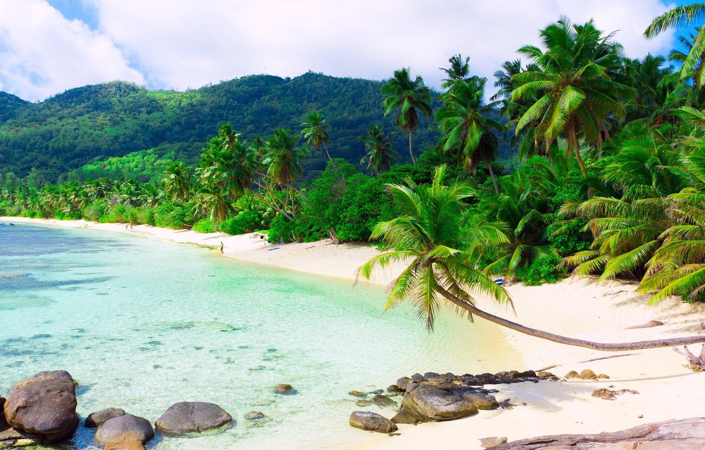 Фото обои песок, море, пляж, облака, пейзаж, тропики, пальмы, остров, белые, sea, scenery, sand beach, Island